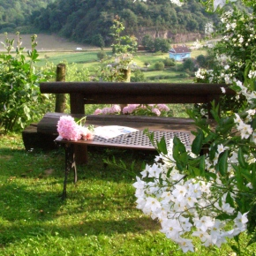 jardin_2